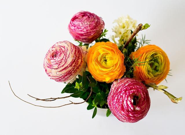 flowers-342532_640
